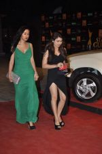 at The Renault Star Guild Awards Ceremony in NSCI, Mumbai on 16th Jan 2014(335)_52d8dbd267a6b.JPG