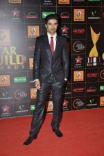 at The Renault Star Guild Awards Ceremony in NSCI, Mumbai on 16th Jan 2014(348)_52d8dbd665bf5.JPG