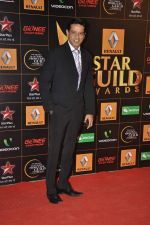 at The Renault Star Guild Awards Ceremony in NSCI, Mumbai on 16th Jan 2014(399)_52d8dbd98d907.JPG