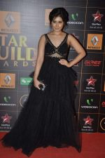 at The Renault Star Guild Awards Ceremony in NSCI, Mumbai on 16th Jan 2014(414)_52d8dbdb00a14.JPG