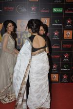 at The Renault Star Guild Awards Ceremony in NSCI, Mumbai on 16th Jan 2014(502)_52d8dbdcad998.JPG