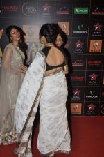 at The Renault Star Guild Awards Ceremony in NSCI, Mumbai on 16th Jan 2014(503)_52d8dbdd11a35.JPG