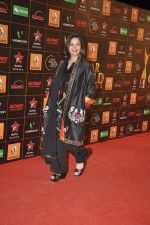 at The Renault Star Guild Awards Ceremony in NSCI, Mumbai on 16th Jan 2014(538)_52d8dbded5fa1.JPG