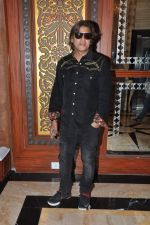 Aadesh Shrivastav at royalty meet in Sea Princess, Mumbai on 16th Jan 2014 (12)_52d8ca2a9ed04.JPG