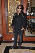 Aadesh Shrivastav at royalty meet in Sea Princess, Mumbai on 16th Jan 2014 (13)_52d8ca2b1bd0e.JPG