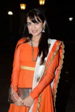 Kulraj Randhawa at Roopa Vohra_s Lohri in Mumbai on 16th Jan 2014 (268)_52d8cda4646d3.JPG