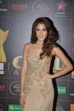 Nicole Faria at The Renault Star Guild Awards Ceremony in NSCI, Mumbai on 16th Jan 2014(387)_52d8dfe166dd9.JPG