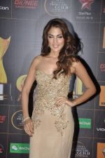 Nicole Faria at The Renault Star Guild Awards Ceremony in NSCI, Mumbai on 16th Jan 2014(388)_52d8dfe1be099.JPG