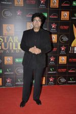 Parsoon Joshi at The Renault Star Guild Awards Ceremony in NSCI, Mumbai on 16th Jan 2014(404)_52d8e02ad0fc5.JPG