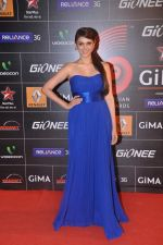 Aditi Rao Hydari at 4th Gionne Star Global Indian Music Academy Awards in NSCI, Mumbai on 20th Jan 2014 (276)_52de20344fd94.JPG