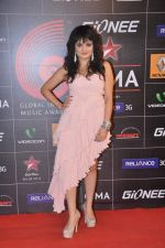 Aditi Singh Sharma at 4th Gionne Star Global Indian Music Academy Awards in NSCI, Mumbai on 20th Jan 2014 (275)_52de203d307b8.JPG