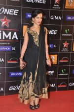 Anoushka Shankar at 4th Gionne Star Global Indian Music Academy Awards in NSCI, Mumbai on 20th Jan 2014 (260)_52de20774658a.JPG