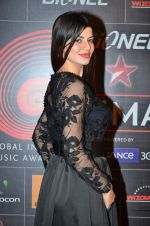 Kainaat Arora at 4th Gionne Star Global Indian Music Academy Awards in NSCI, Mumbai on 20th Jan 2014 (439)_52de339137b1c.JPG