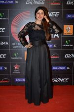 Kainaat Arora at 4th Gionne Star Global Indian Music Academy Awards in NSCI, Mumbai on 20th Jan 2014 (440)_52de339192ed0.JPG