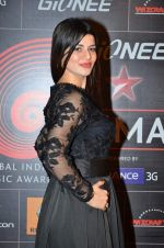 Kainaat Arora at 4th Gionne Star Global Indian Music Academy Awards in NSCI, Mumbai on 20th Jan 2014 (444)_52de33933ff9c.JPG