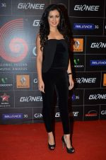 Maryam Zakaria at 4th Gionne Star Global Indian Music Academy Awards in NSCI, Mumbai on 20th Jan 2014