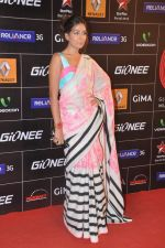 Monica Dogra at 4th Gionne Star Global Indian Music Academy Awards in NSCI, Mumbai on 20th Jan 2014 (249)_52de33e49c296.JPG
