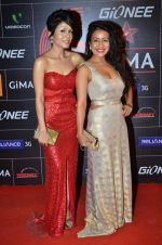 Neha Kakkar, Sonu Kakkar at 4th Gionne Star Global Indian Music Academy Awards in NSCI, Mumbai on 20th Jan 2014 (435)_52de340acbd00.JPG