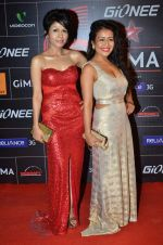 Neha Kakkar, Sonu Kakkar at 4th Gionne Star Global Indian Music Academy Awards in NSCI, Mumbai on 20th Jan 2014 (437)_52de340b4acf4.JPG