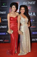 Neha Kakkar, Sonu Kakkar at 4th Gionne Star Global Indian Music Academy Awards in NSCI, Mumbai on 20th Jan 2014 (436)_52de341f0f9bc.JPG