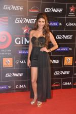 Nicole Faria at 4th Gionne Star Global Indian Music Academy Awards in NSCI, Mumbai on 20th Jan 2014 (316)_52de345dd75db.JPG