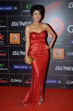 Sonu Kakkar at 4th Gionne Star Global Indian Music Academy Awards in NSCI, Mumbai on 20th Jan 2014 (446)_52de34202af8c.JPG