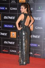 Sophie Chaudhary at 4th Gionne Star Global Indian Music Academy Awards in NSCI, Mumbai on 20th Jan 2014 (273)_52de35974ec8e.JPG