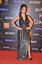 Sophie Chaudhary at 4th Gionne Star Global Indian Music Academy Awards in NSCI, Mumbai on 20th Jan 2014 (274)_52de3597a74a4.JPG