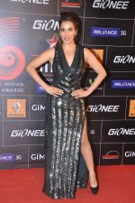 Sophie Chaudhary at 4th Gionne Star Global Indian Music Academy Awards in NSCI, Mumbai on 20th Jan 2014 (276)_52de359ada490.JPG