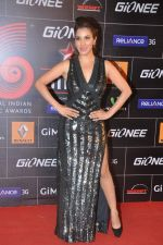 Sophie Chaudhary at 4th Gionne Star Global Indian Music Academy Awards in NSCI, Mumbai on 20th Jan 2014 (277)_52de359be33b3.JPG