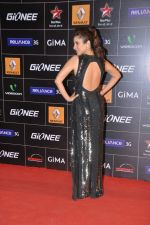 Sophie Chaudhary at 4th Gionne Star Global Indian Music Academy Awards in NSCI, Mumbai on 20th Jan 2014 (278)_52de359ca8d6a.JPG