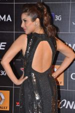 Sophie Chaudhary at 4th Gionne Star Global Indian Music Academy Awards in NSCI, Mumbai on 20th Jan 2014 (280)_52de359e0c6c7.JPG