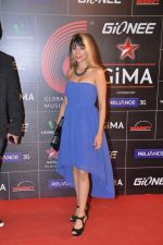 at 4th Gionne Star Global Indian Music Academy Awards in NSCI, Mumbai on 20th Jan 2014 (293)_52de20b0e59ff.JPG