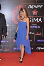 at 4th Gionne Star Global Indian Music Academy Awards in NSCI, Mumbai on 20th Jan 2014 (294)_52de20b14872f.JPG