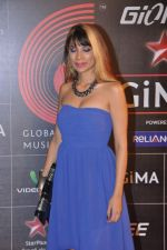 at 4th Gionne Star Global Indian Music Academy Awards in NSCI, Mumbai on 20th Jan 2014 (295)_52de20b19c8c5.JPG