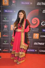 at 4th Gionne Star Global Indian Music Academy Awards in NSCI, Mumbai on 20th Jan 2014 (358)_52de20b2ac85f.JPG