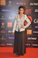 at 4th Gionne Star Global Indian Music Academy Awards in NSCI, Mumbai on 20th Jan 2014 (360)_52de20b365f53.JPG
