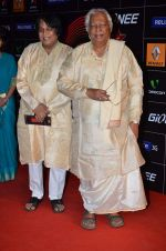 at 4th Gionne Star Global Indian Music Academy Awards in NSCI, Mumbai on 20th Jan 2014 (383)_52de20b515bd9.JPG