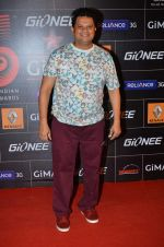 at 4th Gionne Star Global Indian Music Academy Awards in NSCI, Mumbai on 20th Jan 2014 (395)_52de20b616b9b.JPG