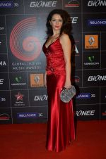 at 4th Gionne Star Global Indian Music Academy Awards in NSCI, Mumbai on 20th Jan 2014 (407)_52de20b8e42c8.JPG
