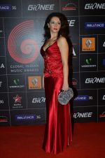 at 4th Gionne Star Global Indian Music Academy Awards in NSCI, Mumbai on 20th Jan 2014 (408)_52de20b946112.JPG