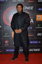 at 4th Gionne Star Global Indian Music Academy Awards in NSCI, Mumbai on 20th Jan 2014 (422)_52de20be5b4d6.JPG