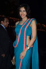 Sonalli Sehgall at Amita Pathak & Raghav Sachar_s wedding ceremony in Mumbai on 21st Jan 2014 (100)_52df882c7e28b.JPG