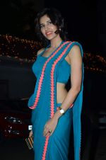 Sonalli Sehgall at Amita Pathak & Raghav Sachar_s wedding ceremony in Mumbai on 21st Jan 2014 (101)_52df882cd3258.JPG