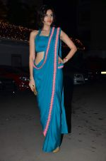 Sonalli Sehgall at Amita Pathak & Raghav Sachar_s wedding ceremony in Mumbai on 21st Jan 2014 (103)_52df882d8823f.JPG