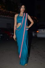 Sonalli Sehgall at Amita Pathak & Raghav Sachar_s wedding ceremony in Mumbai on 21st Jan 2014 (96)_52df882b1bf4e.JPG