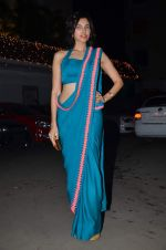 Sonalli Sehgall at Amita Pathak & Raghav Sachar_s wedding ceremony in Mumbai on 21st Jan 2014 (97)_52df882b74087.JPG