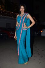Sonalli Sehgall at Amita Pathak & Raghav Sachar_s wedding ceremony in Mumbai on 21st Jan 2014 (98)_52df882bc8517.JPG