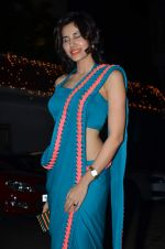 Sonalli Sehgall at Amita Pathak & Raghav Sachar_s wedding ceremony in Mumbai on 21st Jan 2014 (102)_52df882d33e5c.JPG