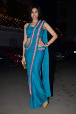 Sonalli Sehgall at Amita Pathak & Raghav Sachar_s wedding ceremony in Mumbai on 21st Jan 2014 (95)_52df882abb273.JPG